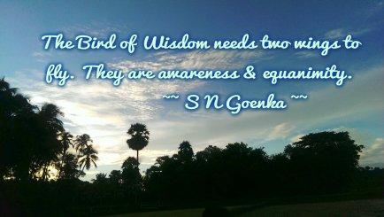Quote - S N Goenka